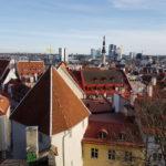 Эстонская фирма приглашает к сотрудничеству